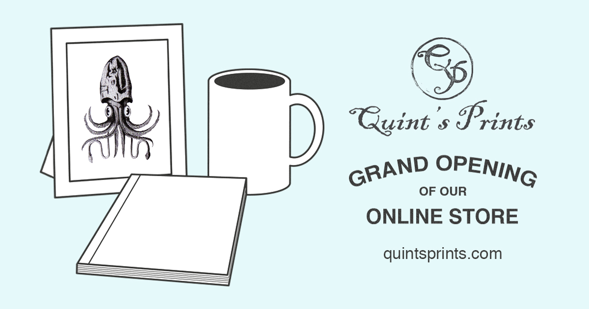 Online Shop Store Opening Banner
