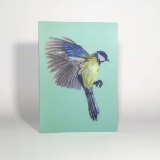 Quints Prints Card Blue Tit Bird