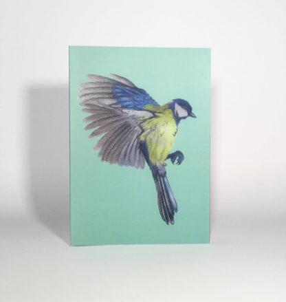 Quints Prints Card Blue Tit Bird