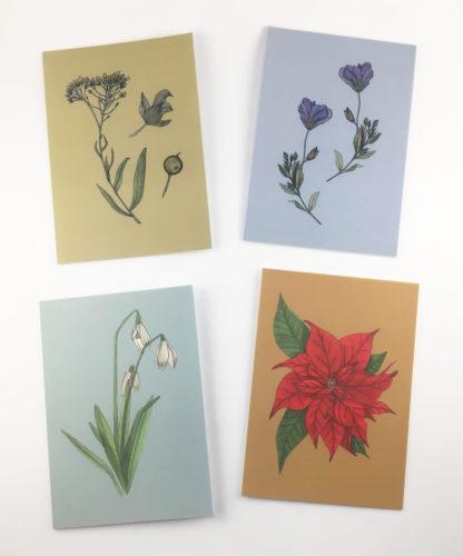 Quints Prints Card Selection Yellow Purple Flower Snowdrop Poinsettia